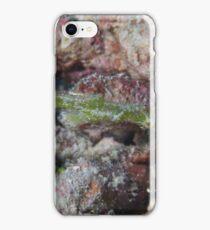 Ghost Pipefish iPhone Case/Skin