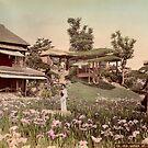 Iris garden at Horikiri, Japan by Fletchsan