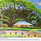 Botanic Gardens Cafe by alisondowell