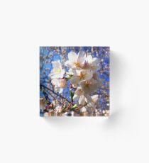 Blue Blossoms Acrylic Block