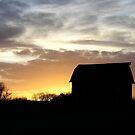 Nebraska Sunset by Martha Johnson