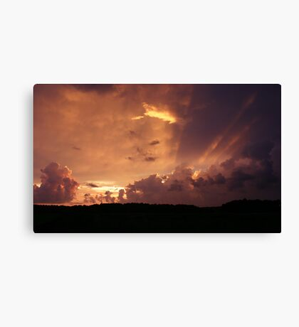 Florida Orange Canvas Print