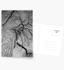 Outreach  Postcards