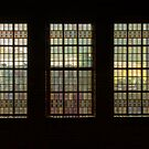 windows by Nicole W.