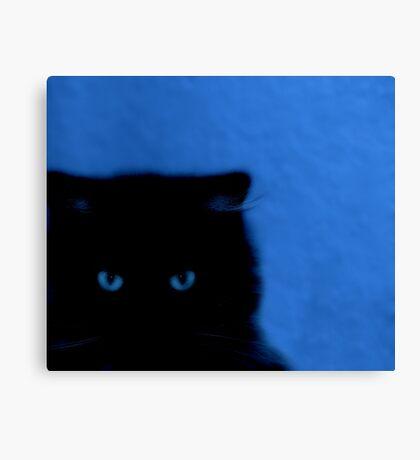 kitty at night Canvas Print