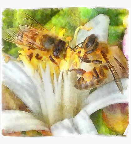 Bees and Flowering Plants Watercolor Poster