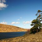 Glenveagh National Park by Martina Fagan