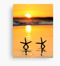Sunset Starfish Canvas Print