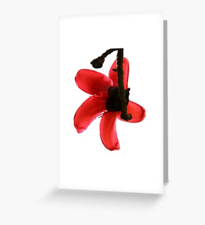 One Greeting Card