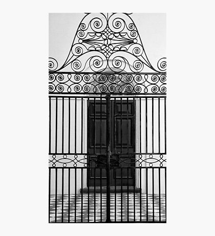 The Gate (B&W) Photographic Print
