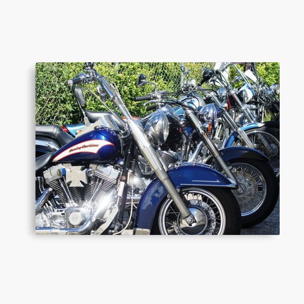 Ready to roll Canvas Print