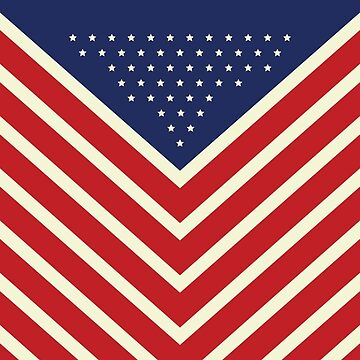 The Freedom Series — American Flag by theillustrators