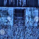 Fire Flies in Blue by TingyWende