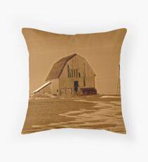 Old Barn In Sepa Throw Pillow