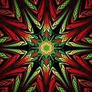 Christmas star by Annmarie *
