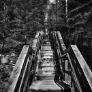 Going Down BW by Gypsykiss