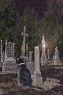 Pet Cemetery by Terri Chandler