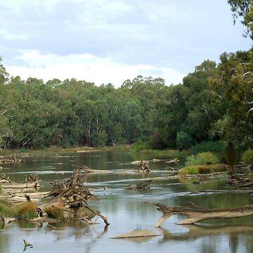 Murrimbidgee River- Wiradjuri Country by SharonD