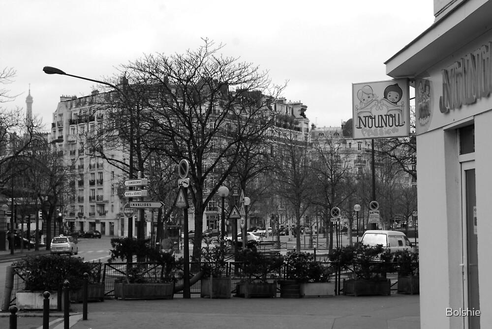 Street View Paris Feb 2013 by Bolshie