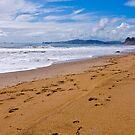 Butterfly Beach. Montecito, California by Eyal Nahmias