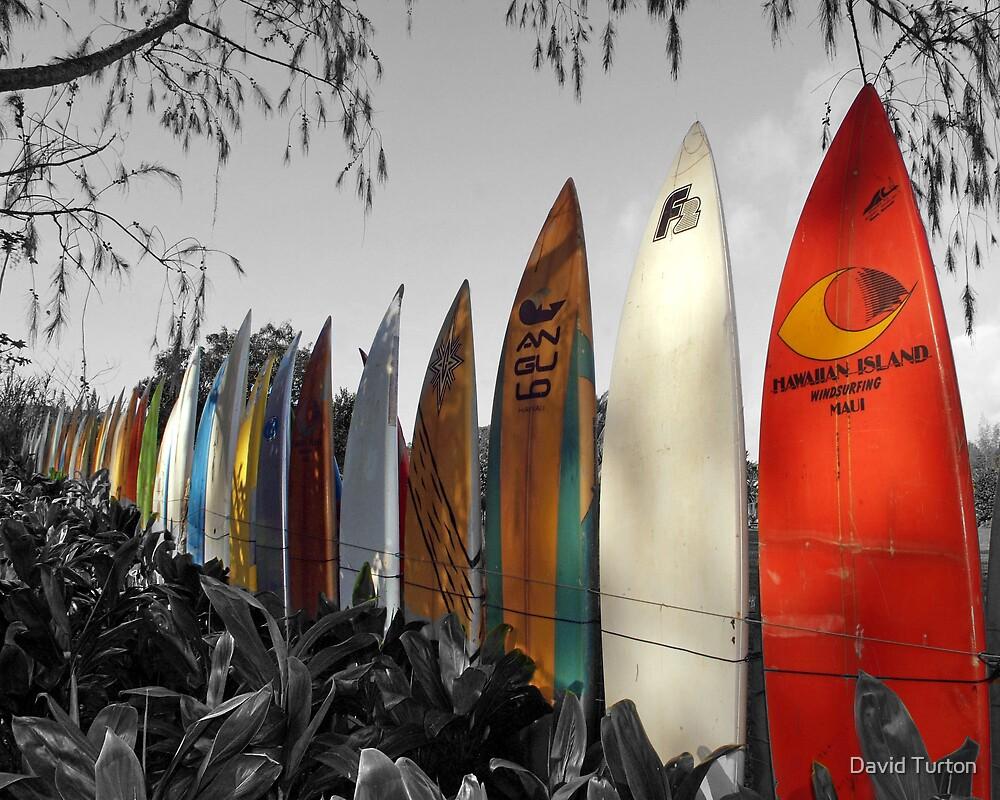 Surfboard Fence by David Turton