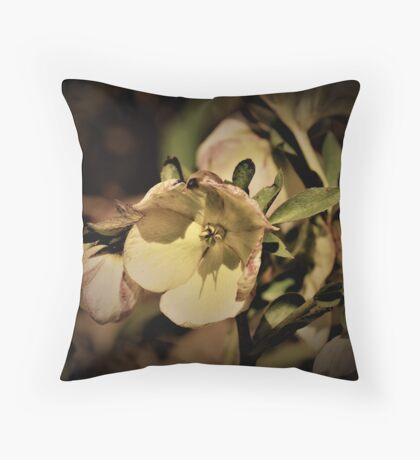 Helleborus Rose de Noel Throw Pillow