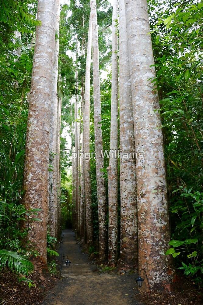 Kauri Avenue by Robyn Williams