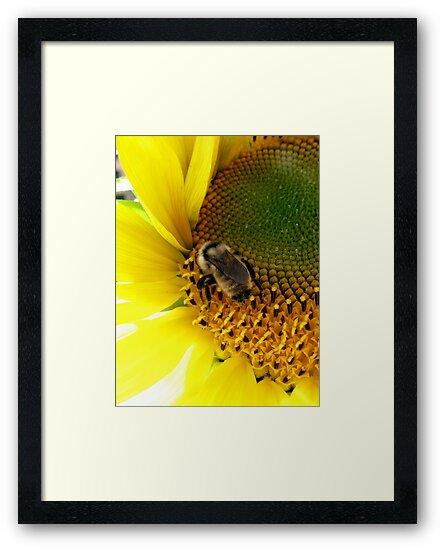 Bee Heaven by Len Bomba