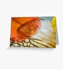 Veil That Shades My Heart Greeting Card