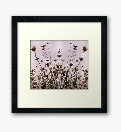Queen Anne's Fantasy  Framed Print