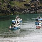 PORT Isaac's in Cornwall by Tenee Attoh
