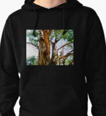 The Tall Tree in Suburbia - Eucalypt T-Shirt