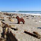Rover? Shipwrecked?  by bricksailboat