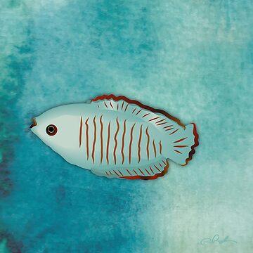 One little fish in the big blue by Nettieliz