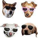 Doggo Stickers: Sunglasses #3 by Elisecv