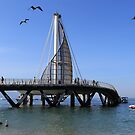 Playa Los Muertos Pier by Teresa Zieba