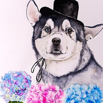 Husky and Hydrangea Flowers Watercolor Painting by namibear