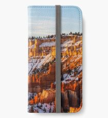Bryce Canyon iPhone Wallet/Case/Skin