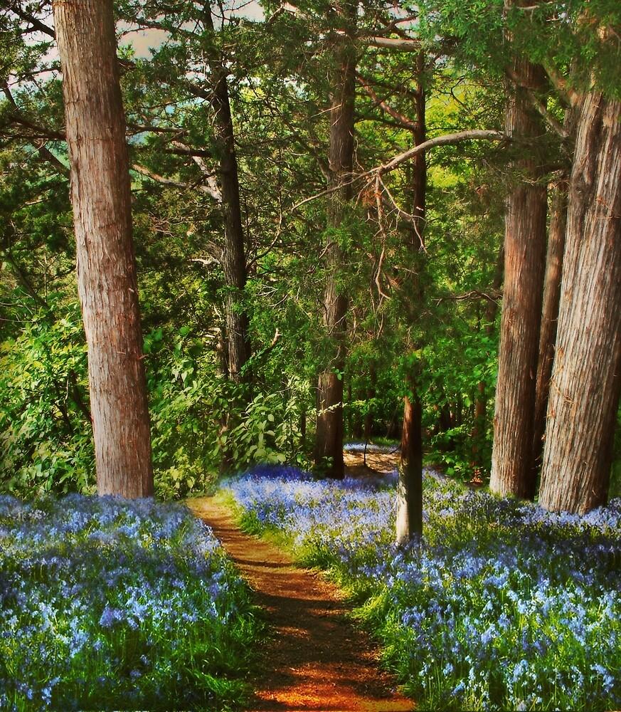 My Blue Heaven by Nadya Johnson