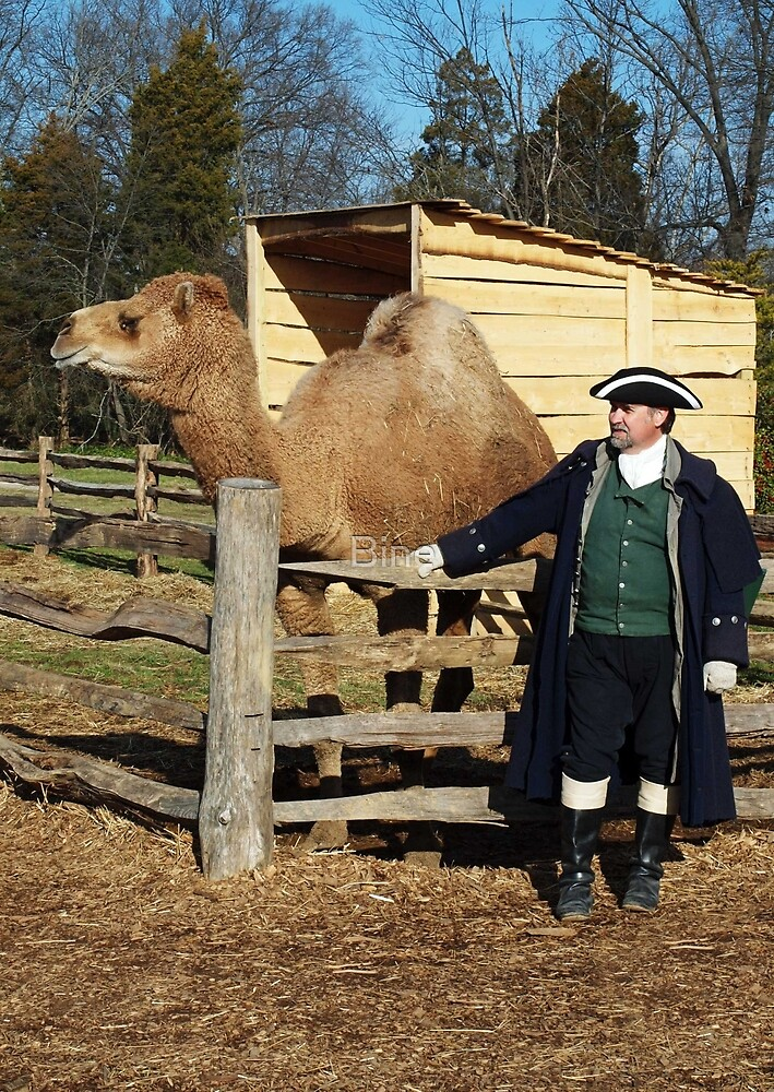 George Washington and his Camel Aladdin by Bine