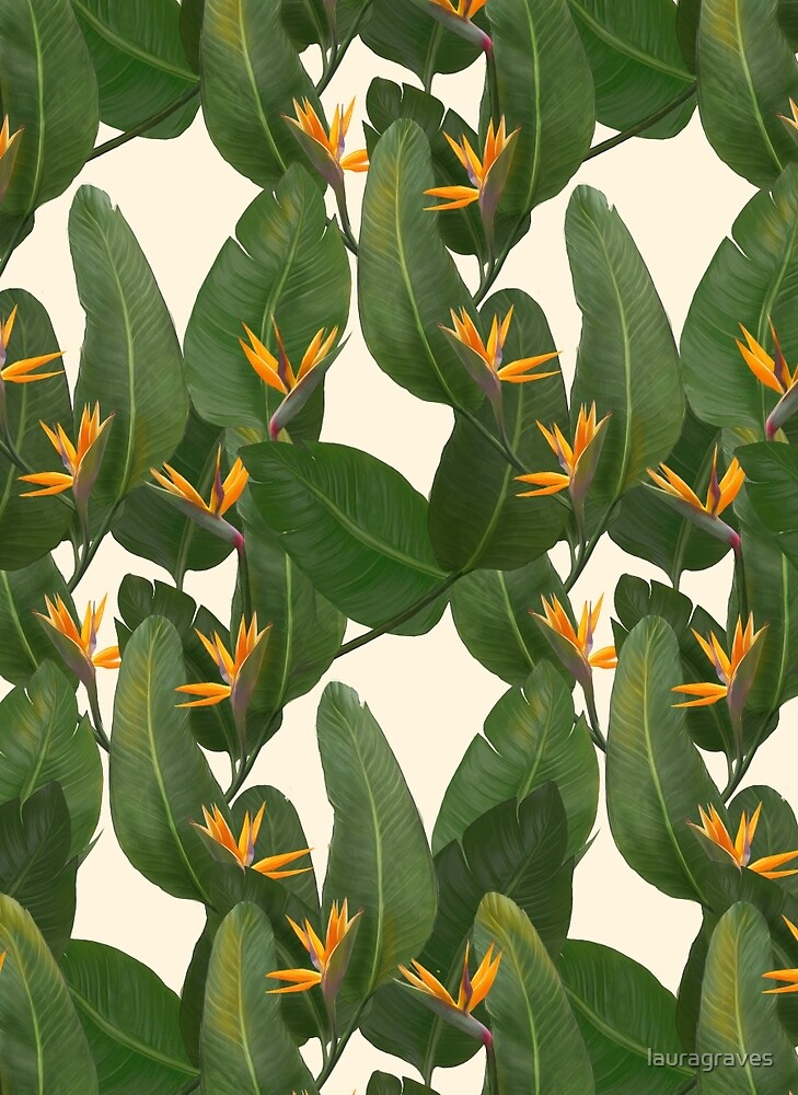tropical floral by lauragraves