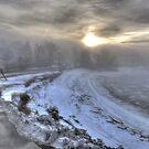 Snow Fog at Dawn by Nancy Richard