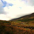 Mountain road by Martina Fagan