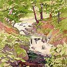 Afon Clywedog by Anne Bonner