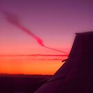 Wing at Sunset by Charmiene Maxwell-Batten