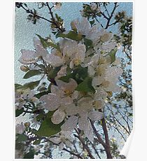 white blossoms, tree art, impressionism painting Poster