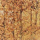 Beech Leaves On Brick by Fara