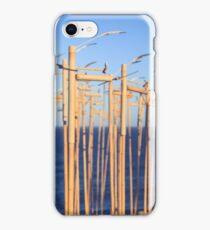 SCULPTURES BY THE SEA BONDI BEACH iPhone Case/Skin