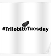 # Trilobite Tuesday Poster