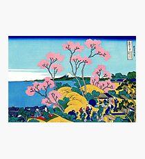 Fuji From Gotenyama Photographic Print